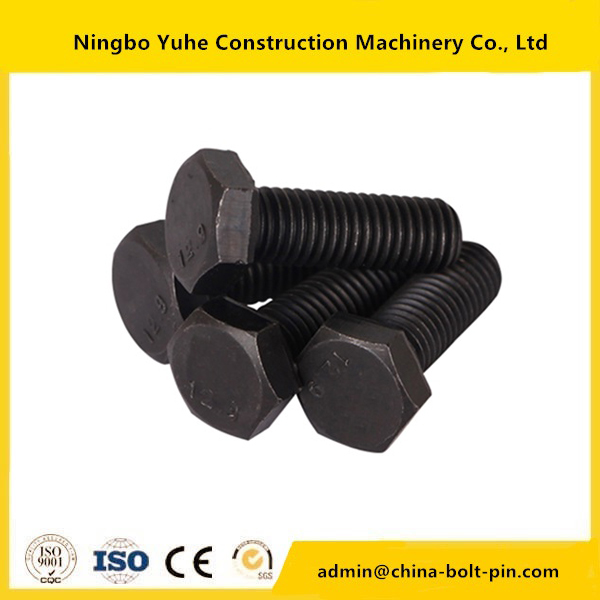 New Arrival China Black Oxide Grade 8.8 Track Bolt -
