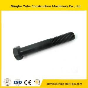 Customized design hex head bolts with nuts