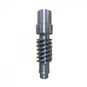 Gear Worm Steel