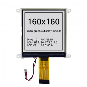 COG Graphic dot matrix  display module 160160COG