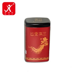 Best-Selling Tin Can Artwork - Rectangle shape tin box 9cm x 6.5cm x 14.8cm – Xin Jia Yi