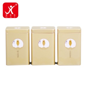 Factory Free sample Metal Cookie Box - Rectangle shape tin box 10.5cm x 7.5cm x 17.5cm – Xin Jia Yi
