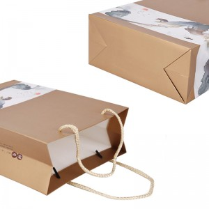 Paper bag 21.5×9.3×27.5cm Custom Printed Luxury Gift Paper Shopping Bag