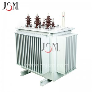 Chinese Professional Oil Immersed Type Transformer -