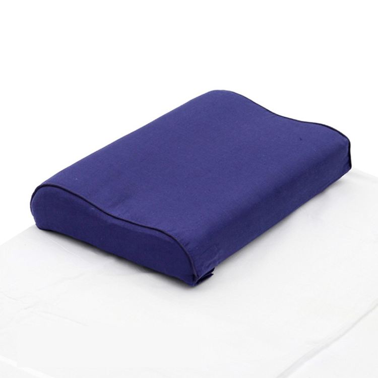 Hot sale comfortable rebound memory pillow student dormitory pillow repair cervical vertebra pillow Featured Image