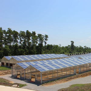 Agricultural greenhouses mounting system