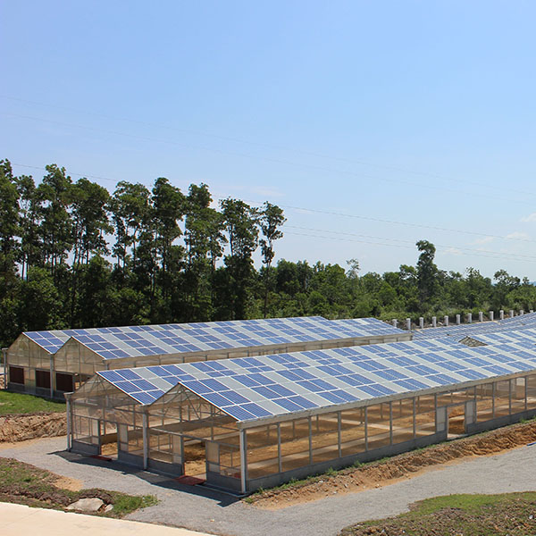 Agricultural greenhouses mounting system Featured Image