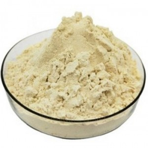 9003BA  Vegetarian Type, Isolated Soy Protein