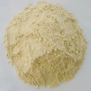 9030  Dispersion Type, Isolated Soy Protein