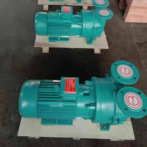 2BVC5 series water ring vacuum pumps and compressors Featured Image