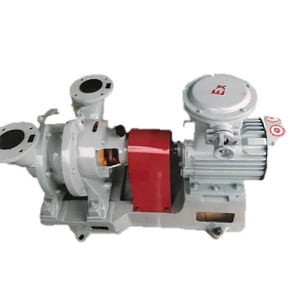 SZ series water ring vacuum pumps and compressors Featured Image