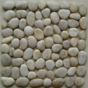 CM556 Pebbles sgleinio White Pebble