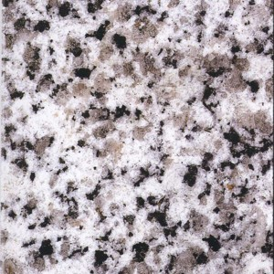 Granite  White Black Flower G – 640