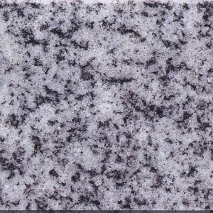 Granite  Pangdang Light G – 633