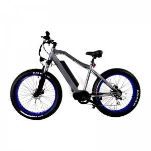 48V 350W-1000W Fat Tyres Electric Bike Mid Drive MTB
