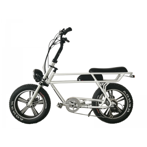 Fat E-bike\Retro Plus 48V 750W E-bike