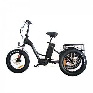 20X20 48V 1000W Mid Drive Fat Tyres Electric Trike