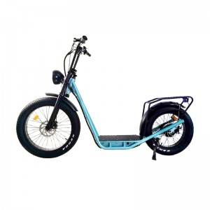 New model Standing Up Fat Tyres Scooter Style Electric Bike Tu 2620