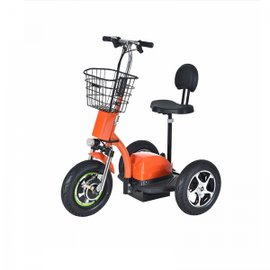T06-5 25km/h 70Km Range Electric Scooter 3 wheels