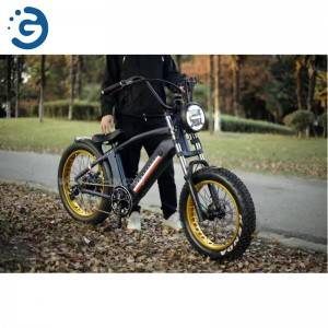 Chinese Factory Hi-Lay I 48V 350W-750W REAR-DRIVE Fat Tyres Electric Bike