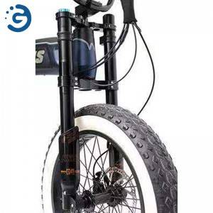 Chinese Factory Leopard II 48V 350W-1000W MID-DRIVE Fat Tyres Electric Bike