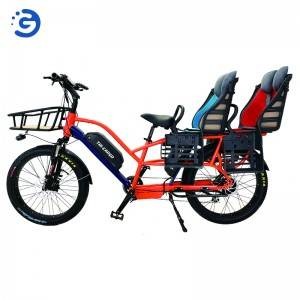 Chinese Factory Wholesaler Hot selling NEW Design TRI-CARGO II Cargo E-Bike with 2 battery