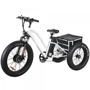 "Rhino 24"" & 20"" Fat E-trike electric tricycle"