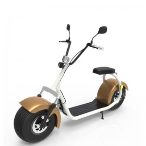 Factory For Bike 1000w -