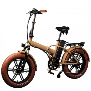 "Moka 20"" Folding Fat Tyre E-bike for girl and boy"