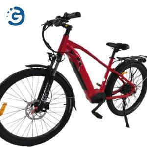 Chinese Manufacturer 48V 500W-1000W MID-DRIVE & REAR-DRIVE MOTOR 27.5″*2.35″ Tyres Electric Bike