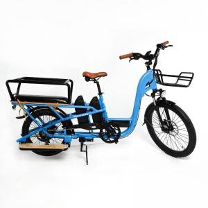 Chinese Factory Wholesaler Hot selling Cargoroo Cargo E-Bike with 2 battery