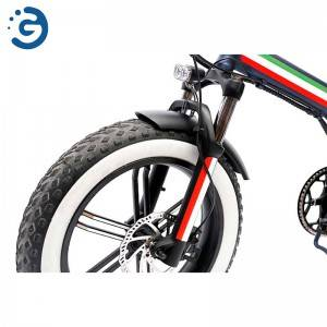 Chinese Factory F20 48V 750W REAR-DRIVE Fat Tyres Electric Bike