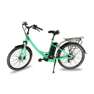 Professional Design Eec/Coc E-Bike 45km/H -