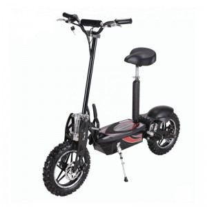 Big discounting Sharing E-Bike Project -