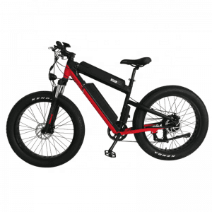 Double Batteries 100km Distance B&B 100 Fat E-bike