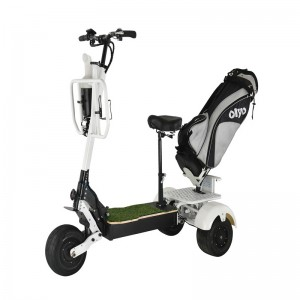 T06-4 40-60-80km/h 60-70Km Range Electric Scooter 3 wheels