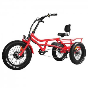"Recreational Tri-de 24"" & 20"" Fat E-trike"
