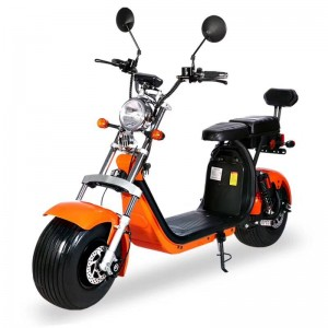 EEC & COC CP2 Approved Citycoco E-scooter