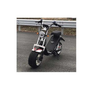Harley E Scooter MT-00