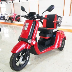 Electric Leisure Passenger Trike BD01