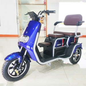Electric Leisure Passenger Trike QFII