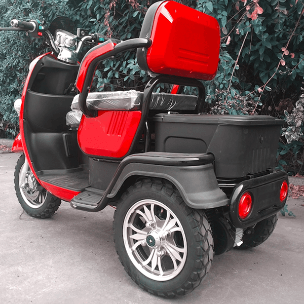 Massive Selection for Freestyle Tricycle -