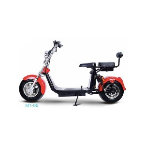 Harley E Scooter MT-06