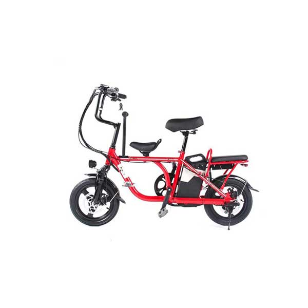 One of Hottest for Electric Folding Bicycle -