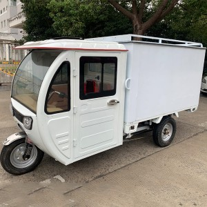 Weather Proof Enclosed E Cargo Tricycle(3W)