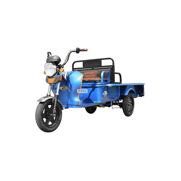 OEM/ODM China Open Body Cargo Electric Tricycle -