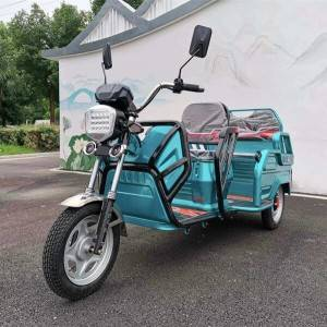 Electric Passenger and Cargo Convertible Trike