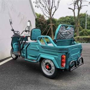 Electric Passenger-Cargo Convertible Trike