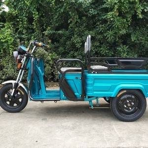 Electric Mini Cargo Tricycle