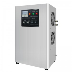 2019 Good Quality China Ozone Generator Room Sterilizer Machine O3 Air Purifier Home Ozonizer 7g/H